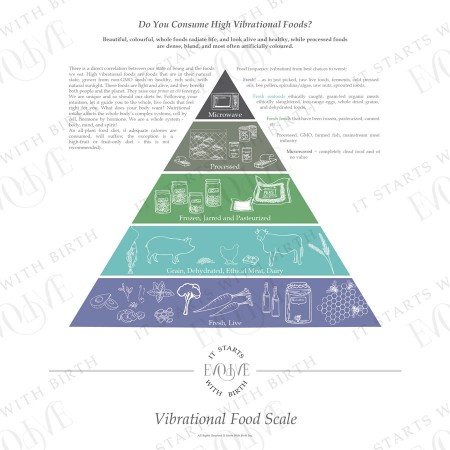 #4 Vibrational Food Scale